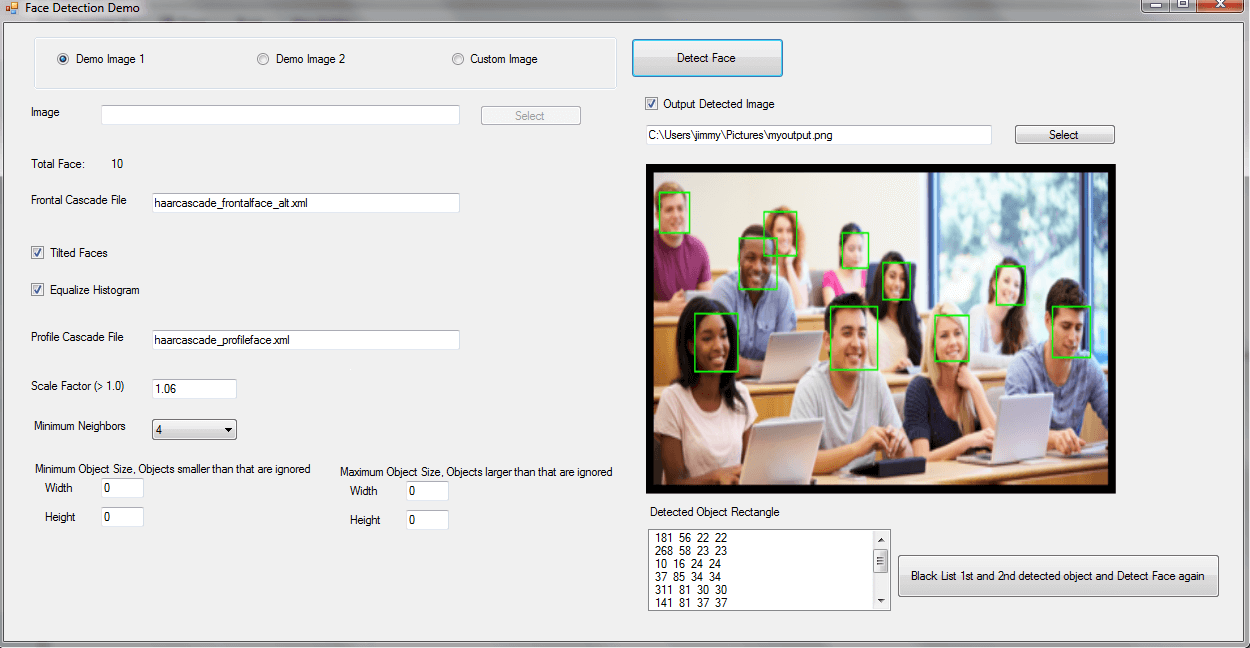 Face Detection SDK ActiveX Control screenshot - Windows 8